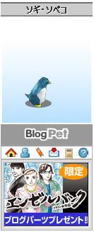 Blog_pet